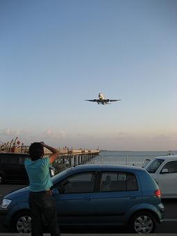 s_okinawa 046.jpg