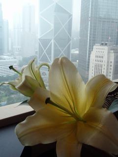 s201004Macau-HongKong222.jpg