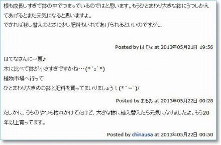 shua_comment1.jpg