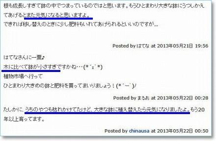 shua_comment2.jpg